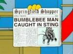 the-simpsons-news-headlines
